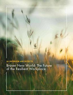 Braver New World