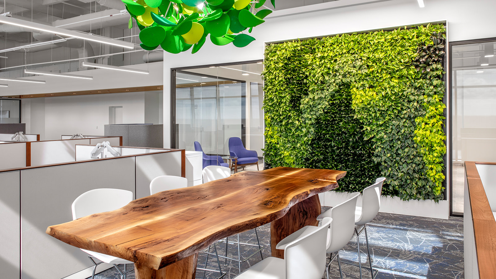 A living plant wall at the Arch Insurance work space in Raleigh